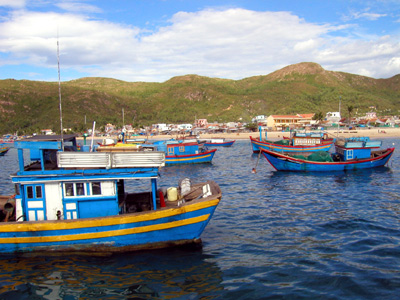 Hoi An to Quy Nhon one day tour